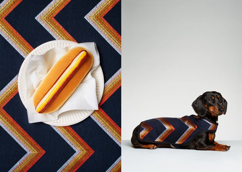 Photographer Jess Bonham pairs dogs with hotdogs